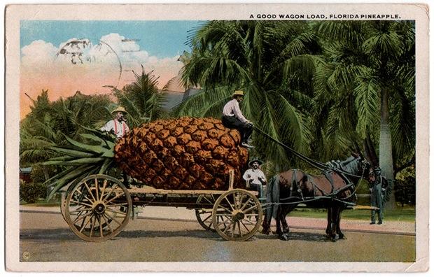 A Good Wagon Load