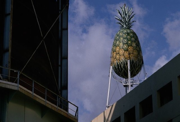 Dole Water Tower