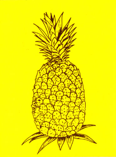 Maui Pineapple Co. Decal