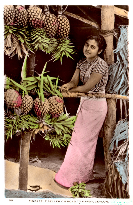 Pineapple Seller on Road to Kandy, Ceylon