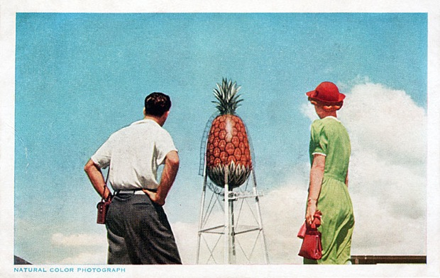 Pineapple Water Tower At Honolulu