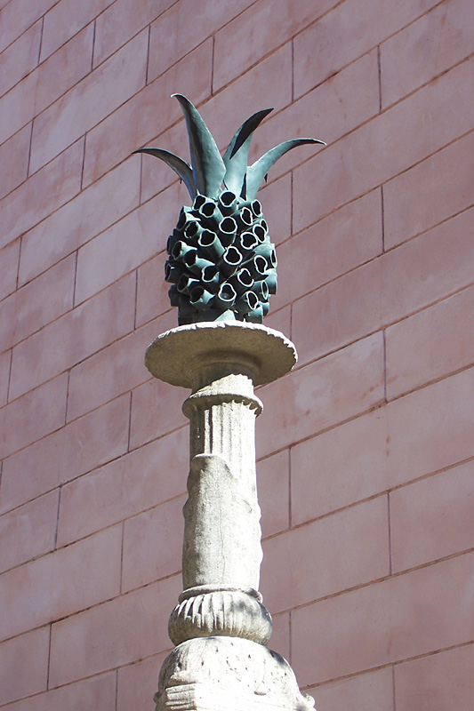 Pineapples in Savannah (Detail)